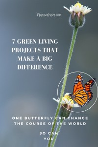 7 environmental projects that make a big difference-2